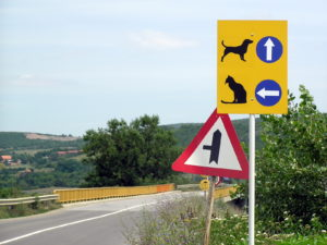 Cat & dog road sign, Kosovo